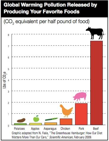 CO2 Meat